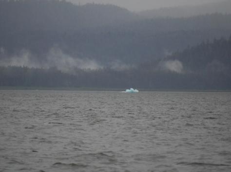 iceberg (1024x766)