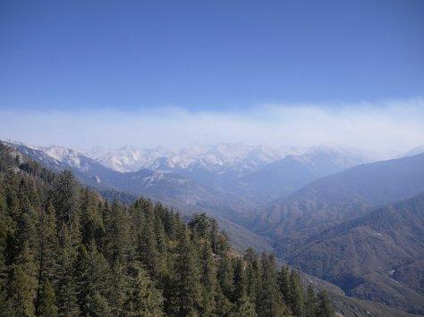 2014-10-23 Redwoods (80 of 142)