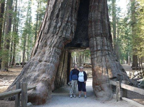 2014-10-27 Yosemite (2 of 119)