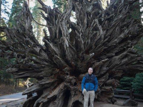2014-10-27 Yosemite (4 of 119)